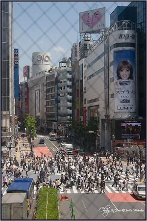Japan 2007 TOKYO -  Shibuya