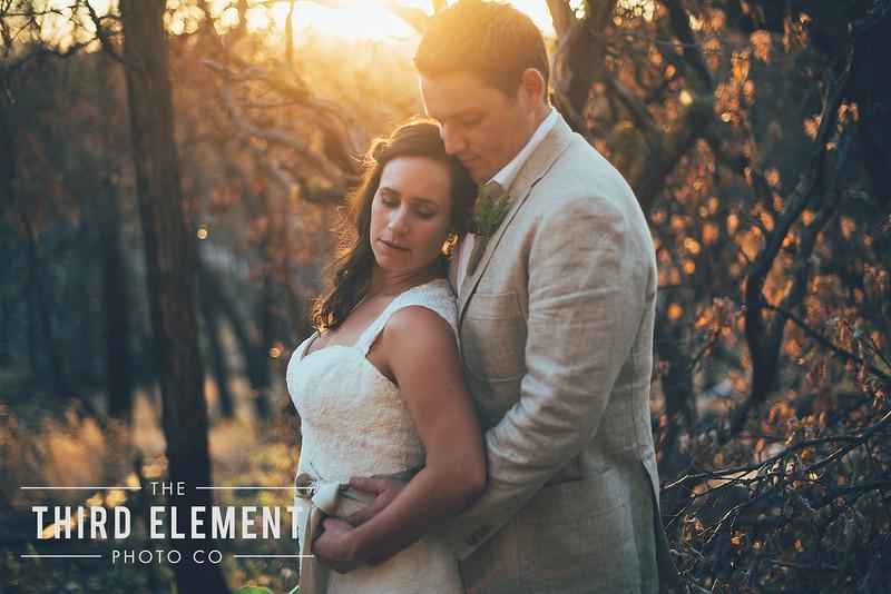 Third Element Photo Co Brittney + Errol Yosemite Wedding Hetch Hetchy San Francisco_0021.jpg