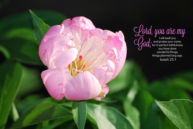 23_Isaiah25-1_BS_2013-6-13.jpg