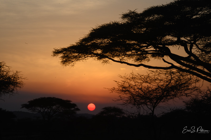 Tanzania 2019-4447.jpg