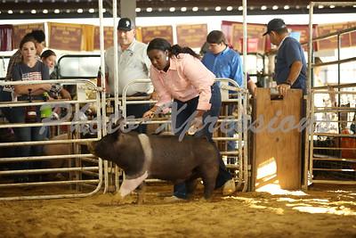9-26-21 Sunday Swine Show