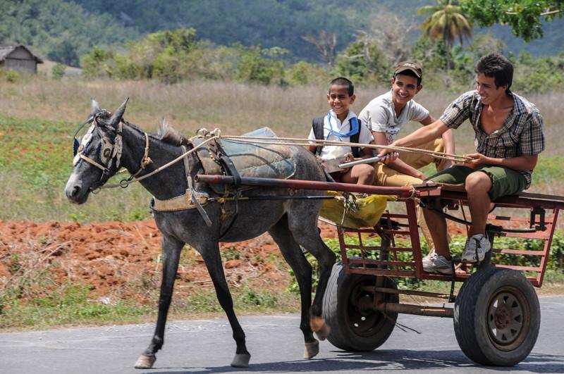 CubaCarts-8.jpg