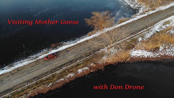 Visiting Mother Goose
