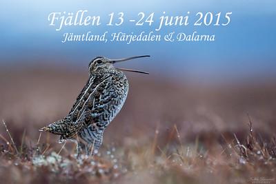 Jämtland, Härjedalen & Dalarna 2015