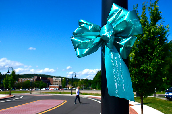 8/29/2019 Mike Orazzi | Staff Teal ribbons on Hope Street in downtown Bristol while preparing for September which is Ovarian Cancer Awareness Month.