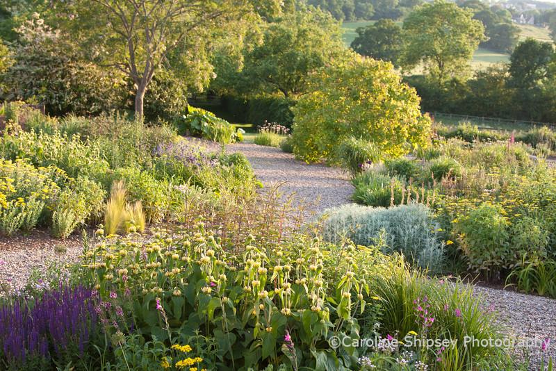 The Organic Gardens, Holt Farm-2269.jpg