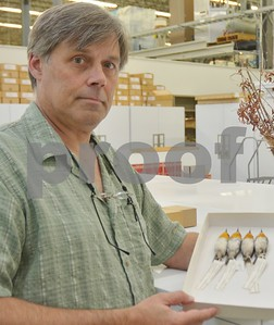 texas-am-team-discovers-three-new-bird-species-in-africa
