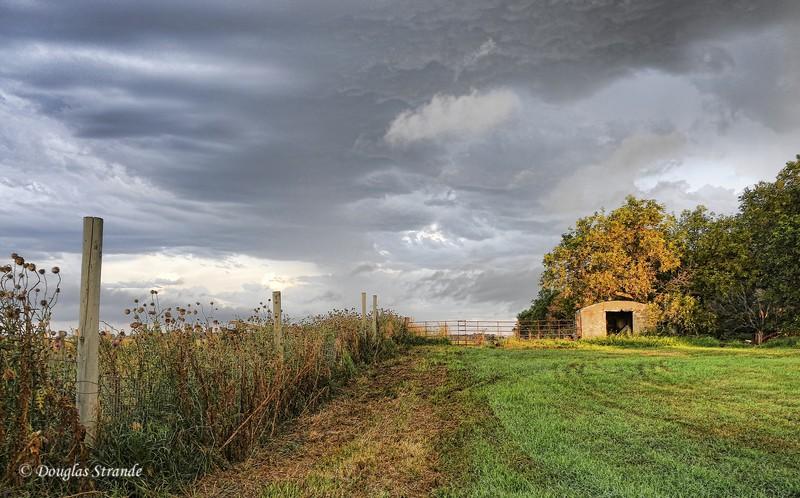 2010   Storm Clouds