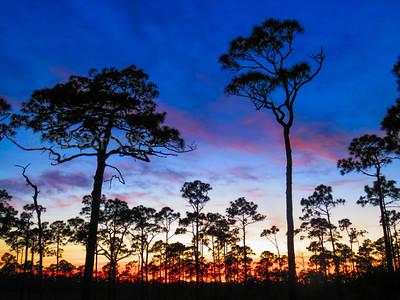 Jonathan Dickinson State Park, West Palm Beach, Florida