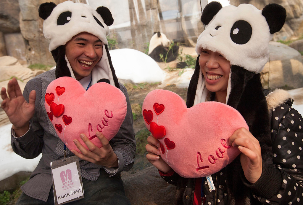 . Participants are seen at a Valentine\'s Day speed dating event at the panda enclosure at Ocean Park, Hong Kong, China, 14 February 2014.  EPA/ALEX HOFFORD
