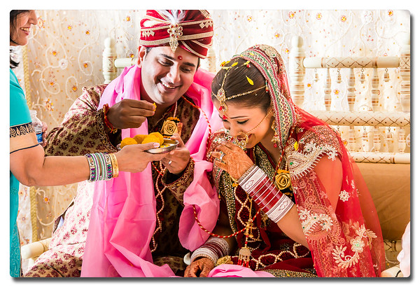 Vanshika & Sushil's Wedding