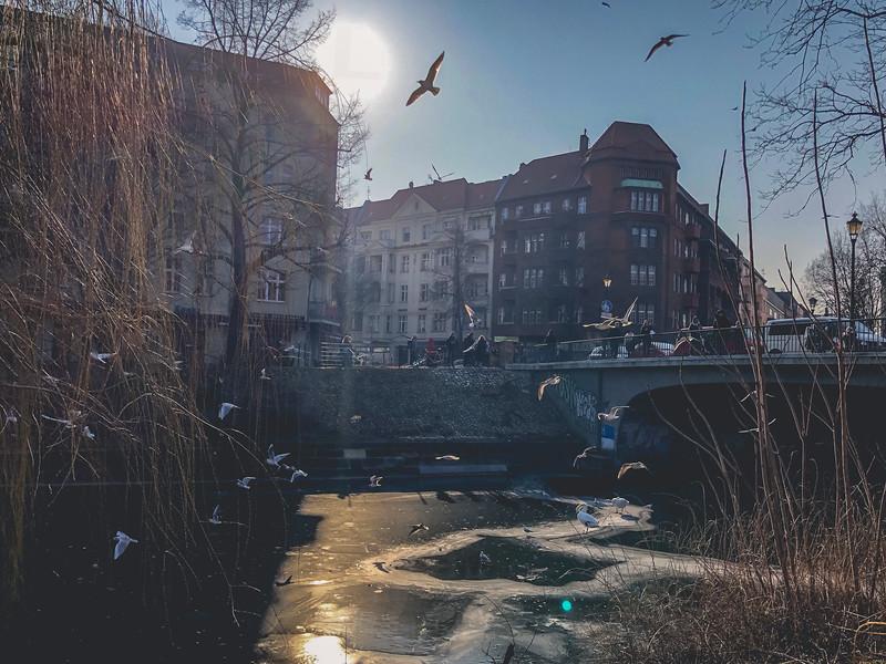 Berlin1Yearand3Months-250.jpg