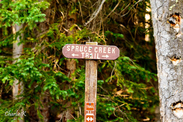 Spruce Creek Trail