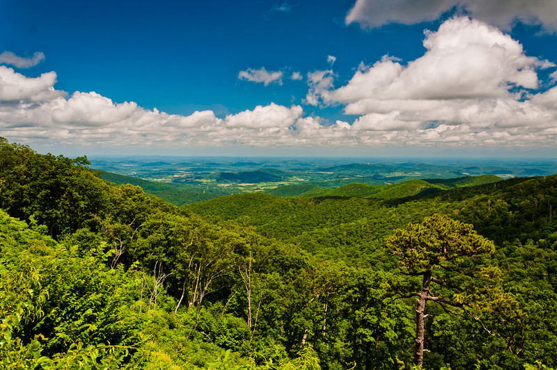 View of Appalachian Mountains, Shenandoah National Park, Virginia