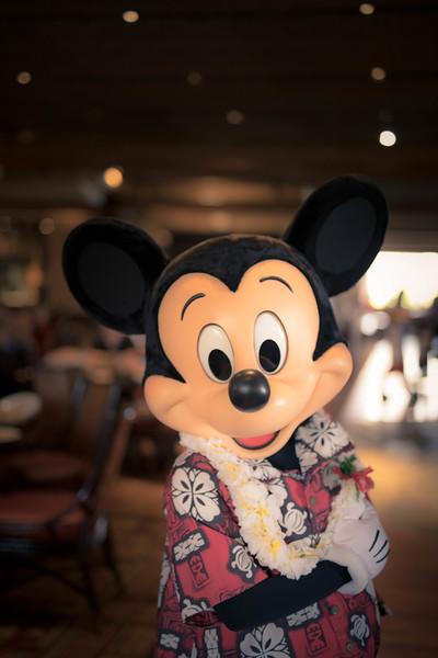 Disney Feb 2019