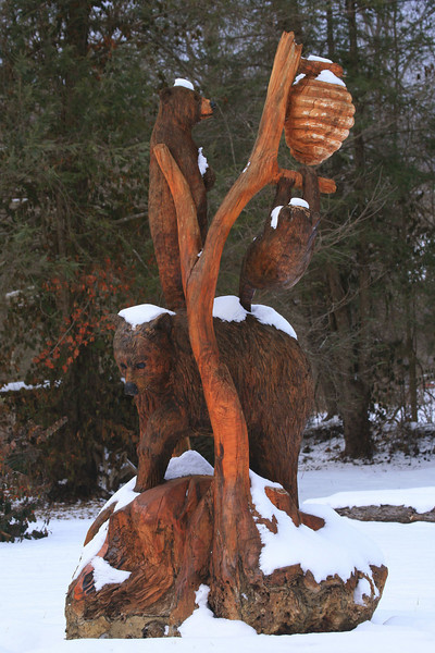 This bear carving is on Hwy 321 very near the Greenbrier entrance to the park.  I have passed it many times but never chose to take a photo until now.  Greatly enhanced by the snow.