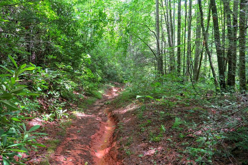 Yellow Gap Trail -- 2,400'