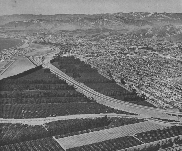 1963-03-04-CAHiPub-34.jpg