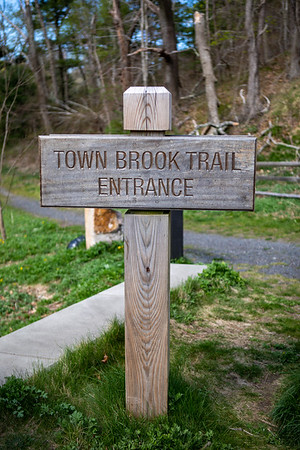 Town Brook Trail 5/5/20