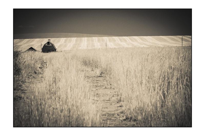 Farmer WA  (23 of 24).jpg