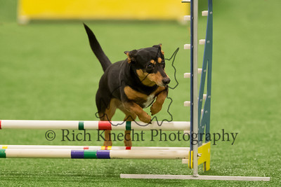 Artful Dodgers CPE Agility Trial March 22-24