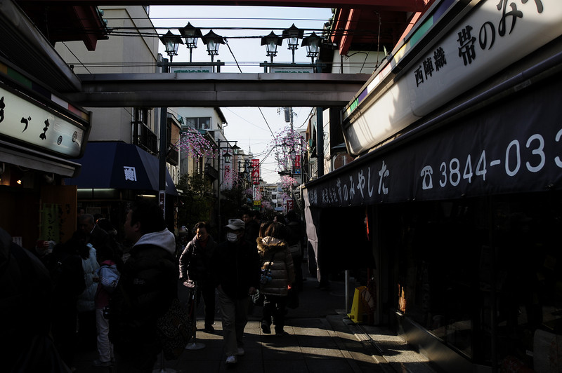 Jan292011_Tokyo_0036.JPG