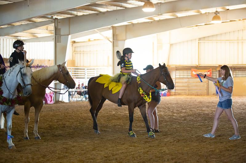 HorseCostume-64.jpg