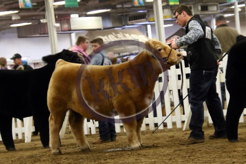 Hoosier Beef Congress