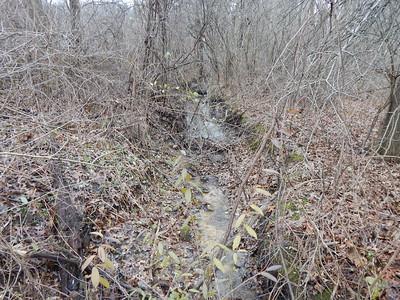 Oak Hill Trail12-10-19