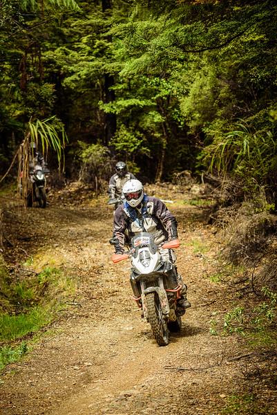 2019 KTM New Zealand Adventure Rallye (1297).jpg