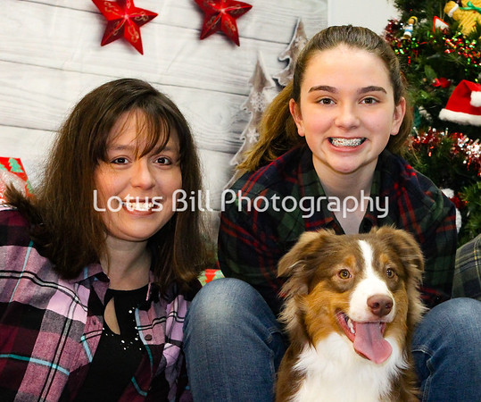 Cash-Miniature American Shepherd