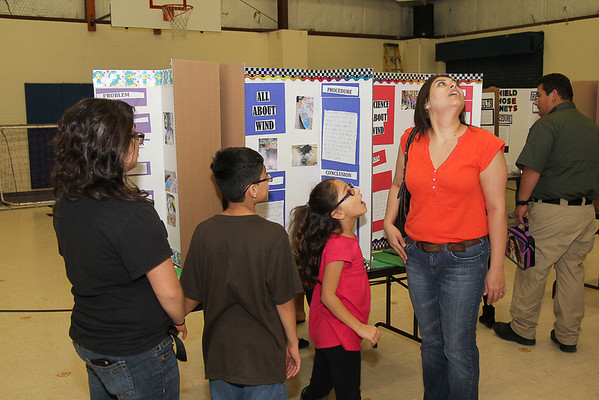 Bonham Science Fair