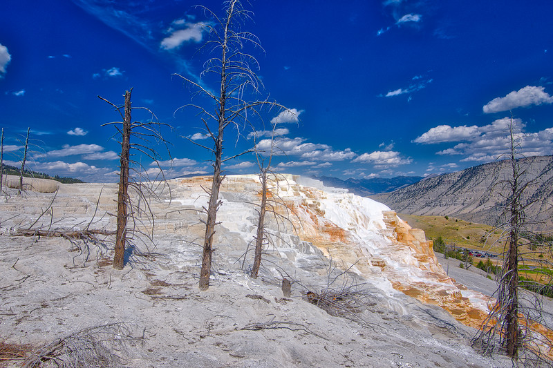 Yellowstone Day 2 R--17.jpg