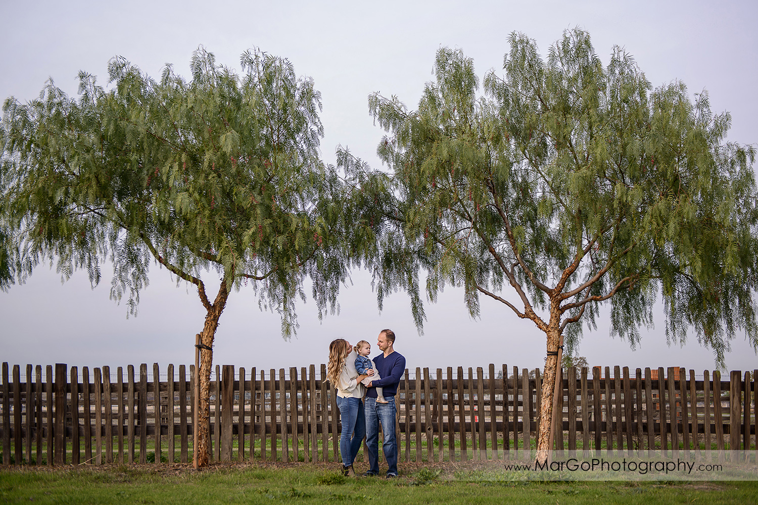 wide angle portrait of family of three wearing white and navy blue clothes under two trees during session at San Jose Martial Cottle Park