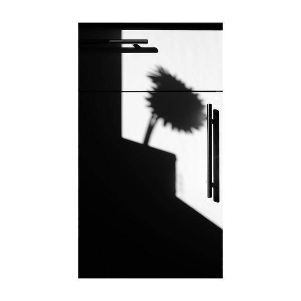 60_365_Shadows_10x10.jpg