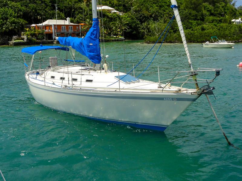 Bermuda-00794.jpg