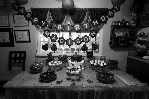 Maddie First Birthday