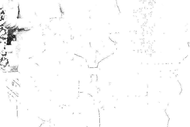 DSC05483.png
