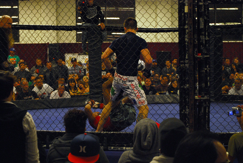 romo_fight_03_17_010.jpg