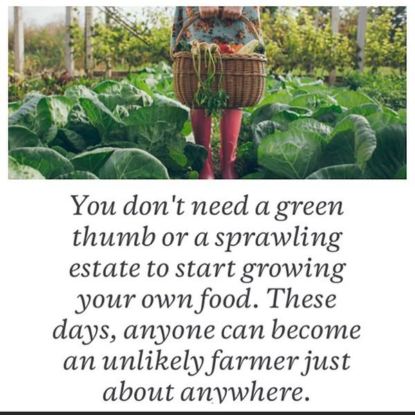 conscious-FreshGreenSmoothies_com-Vegan-Intelligent-Compassionate-raworganicvegan-plantbased-greensmoothies-OrganicGardeningArt-Art-Aeroponics7884.jpg