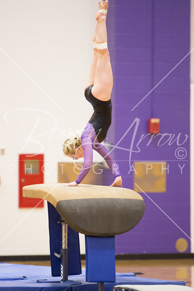 2018-02-19 Gymnastics vs Coldwater