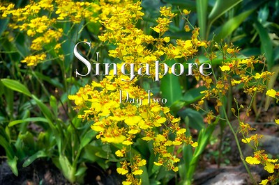 2014-03-09 - Singapore