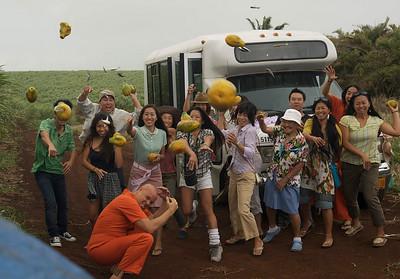 Get A Job - Production Film Stills  Maui HI 2010