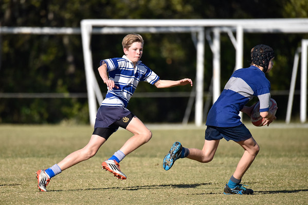 Round 6 Rugby - NC vs ACGS