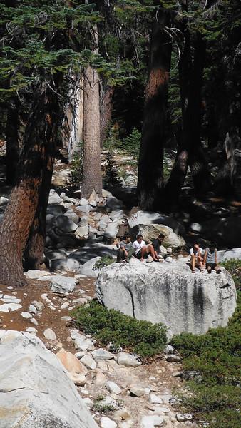 sequoia 092.JPG