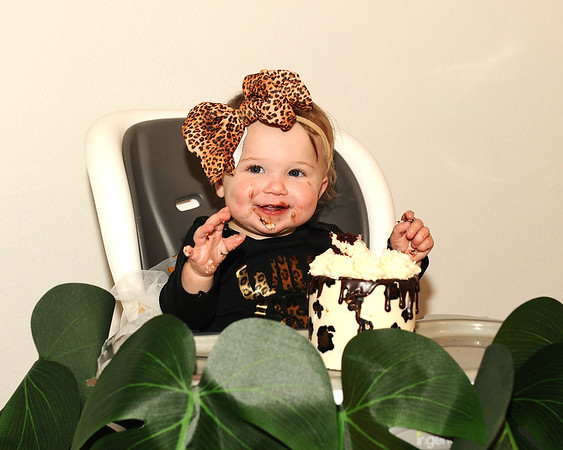 Nora's First Birthday