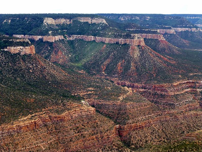 Grand Canyon North Rim - KW - stelprdb5430609 - KCOT.jpg
