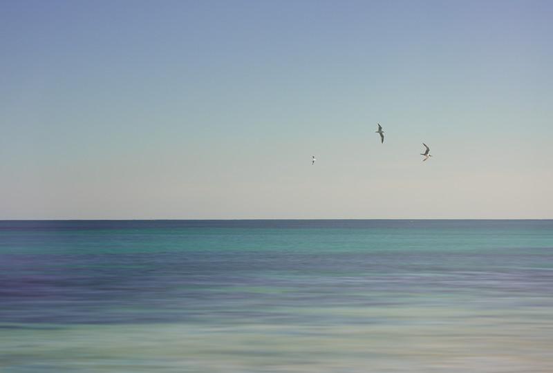 Beach-2869-blured-2.jpg