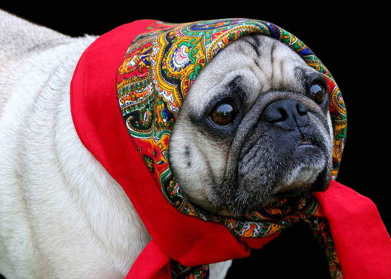 BABUSHKA - URAL MOUNTAINS, RUSSIA