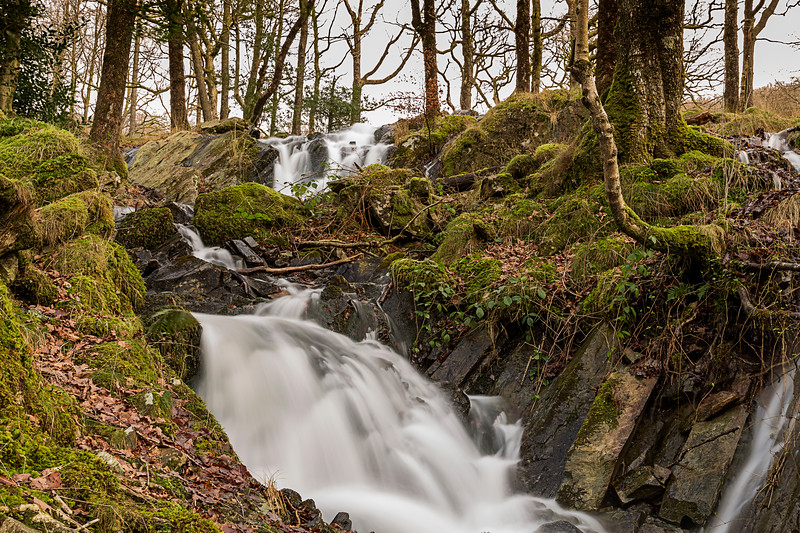 A Waterfall In Tom Gill, Tarn Hows